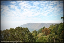 Munnar 1- India