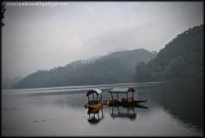 Munnar 4- India