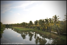View from bridge near Varca , Goa