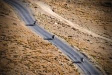 Bikers we met enroute Sarchu